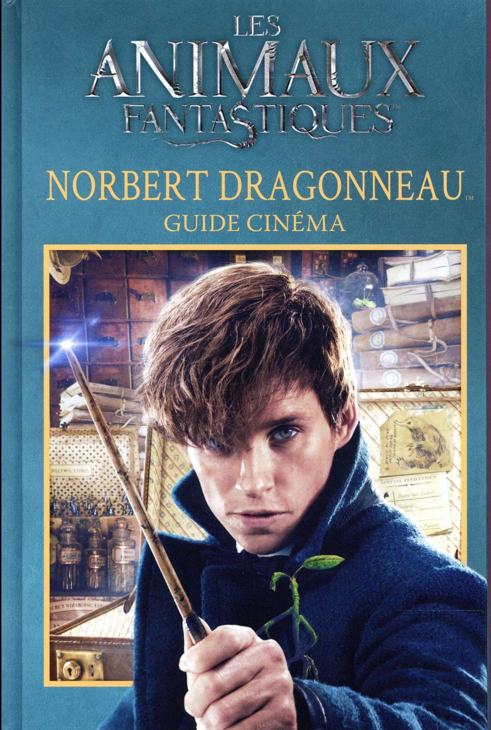 GUIDE CINEMA 7 : NORBERT DRAGONNEAU COLLECTIFS JEUNESSE Gallimard-Jeunesse